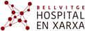 Hospital en xarxa